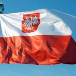 Доставка женской одежды из Польши