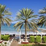 Лучшие варианты отдыха в ОАЭ с детьми